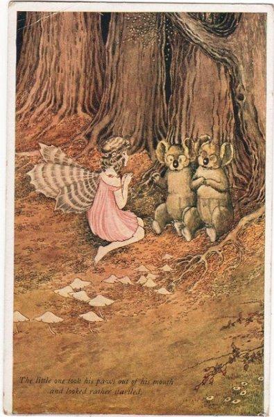 画像1: コアラとお話しする妖精 Ida Outhwaite (1)