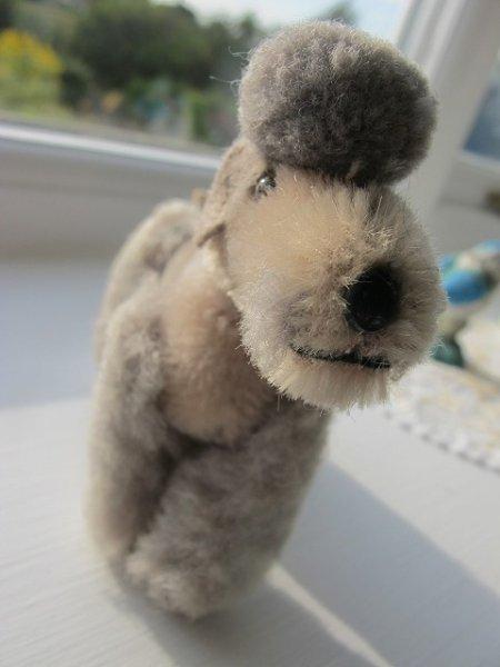 画像1: Vintage Stuffed Toy  Steiff シュタイフ 小さなプードル犬 グレー (1)