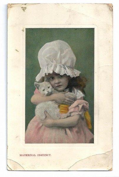 画像1: Postcard 白猫を抱きしめる女の子    (1)