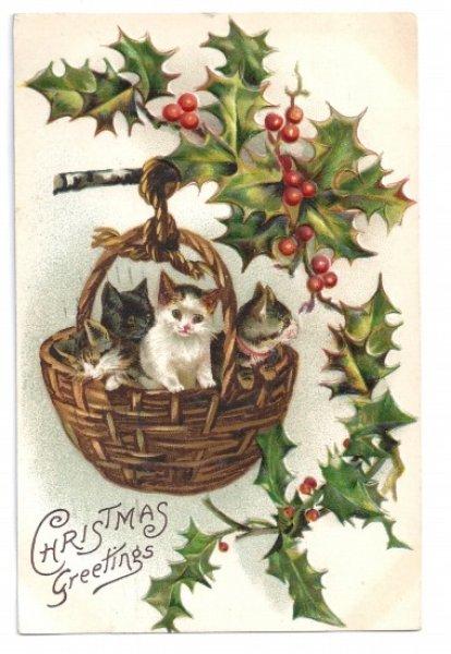 画像1: Postcard Xmas クリスマス バスケットの4匹の子猫たち Helena Maguire 1910年 (1)