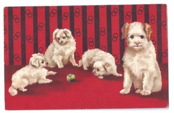 画像1: Postcard ボールで遊ぶ子犬 Helena Maguire (1)