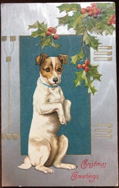 画像1: Postcard クリスマス 芸をするテリア犬 H.Maguire 1907年 (1)