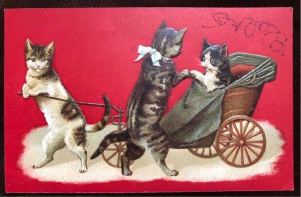 画像1: Postcard 猫のリキシャ 1911年 (1)