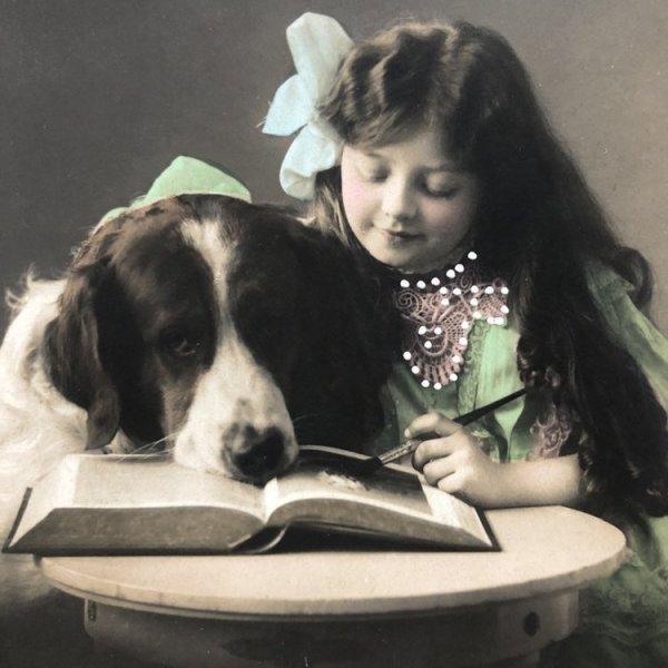 画像1: Postcard 大きな犬と女の子 イギリス1912年 (1)