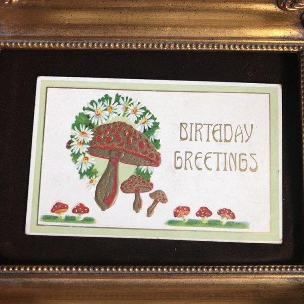画像1: Postcard  キノコとデイジーのお花 Birthday Greetings (1)