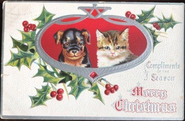 画像1: Postcard 犬と猫 Helena Maguire 1909年 (1)