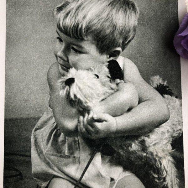 画像1: Postcard  犬のぬいぐるみを抱く男の子  (1)