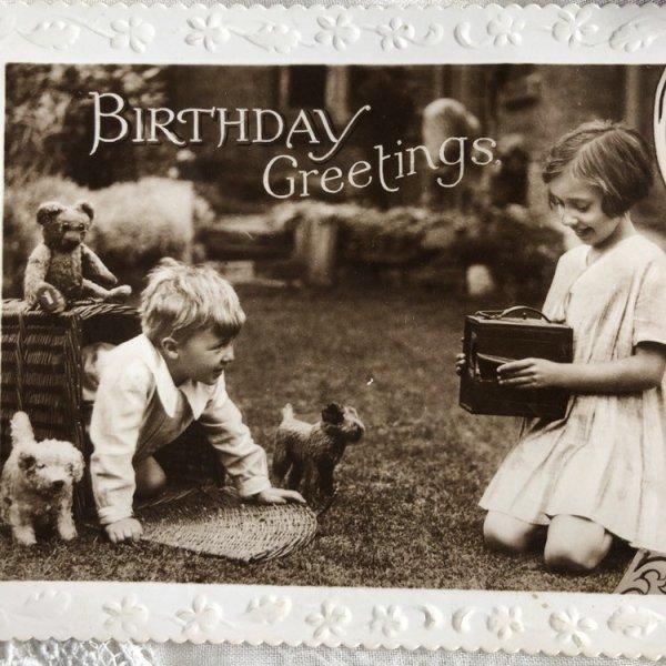 画像1: Postcard  小さな写真屋さん テディベア 犬のぬいぐるみ  (1)