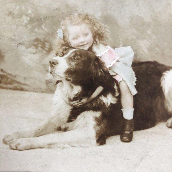 画像1: Postcard  大きな犬に乗る女の子 フランス1906年 (1)