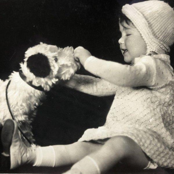 画像1: Postcard  犬のぬいぐるみと女の子 オランダ1935年 (1)