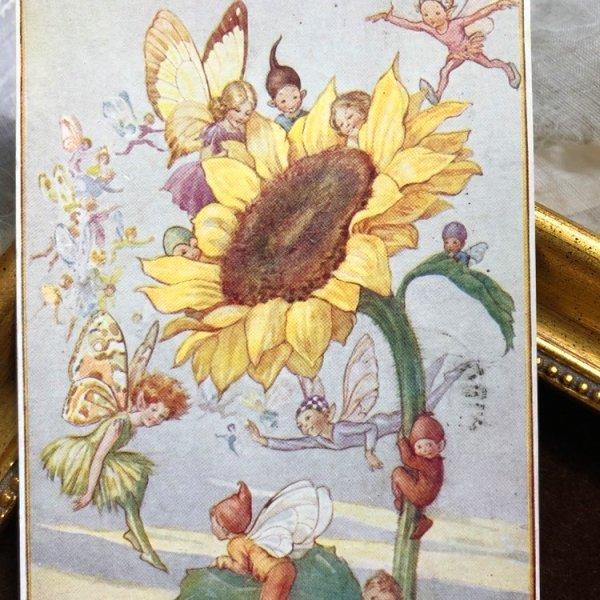 画像1: Postcard  ヒマワリのお花の妖精たち Sunflower Fairies by Margaret Tarrant  (1)