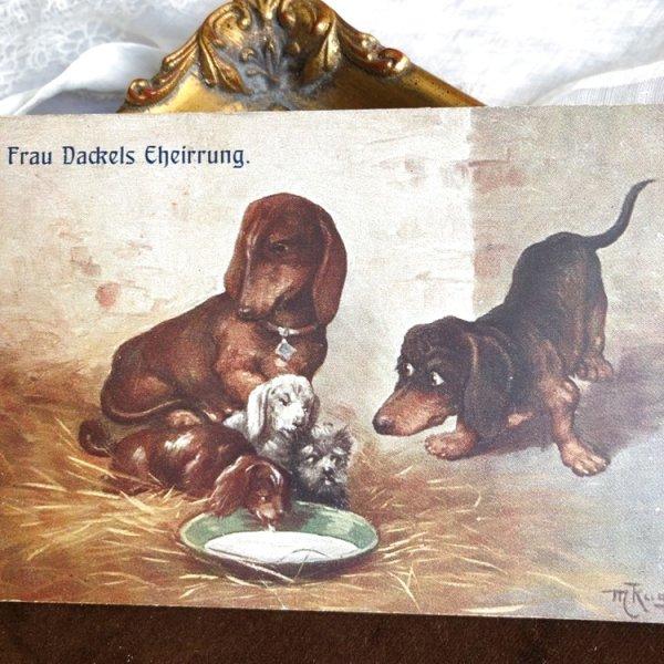 画像1: Postcard ダックスフンド犬の親子 (未使用) (1)