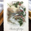 画像1: Postcard クリスマス 雪景色 ホーリー アメリカ1923年 (1)