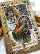 画像2: Postcard 感謝祭 サンクスギビング 七面鳥と猟師 栗   (2)