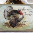 画像1: Postcard 感謝祭 サンクスギビング 七面鳥  Ellen Clapsaddle (1)