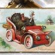 画像1: Postcard 感謝祭 サンクスギビング 自動車を運転する七面鳥 1911年 (1)