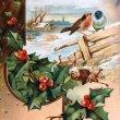 画像1: ▼SALE 500▼ Postcard クリスマス 小鳥とホーリー (1)
