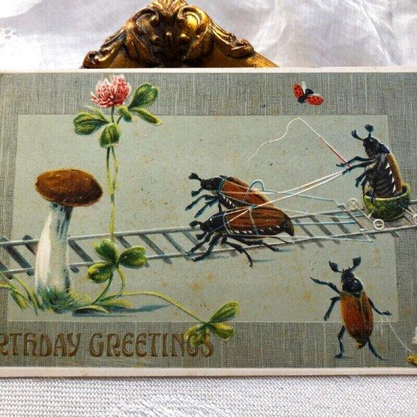 画像1: Postcard コフキコガネ虫のトロッコ車 キノコ (未使用) (1)