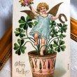画像1: Postcard  新年祝い 四葉の植木鉢と天使(妖精?) 1908年 (1)