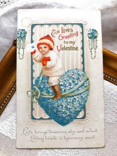 画像1: Postcard  バレンタイン 忘れな草のお花のハートに乗る男の子  Ellen Clapsaddle (1)