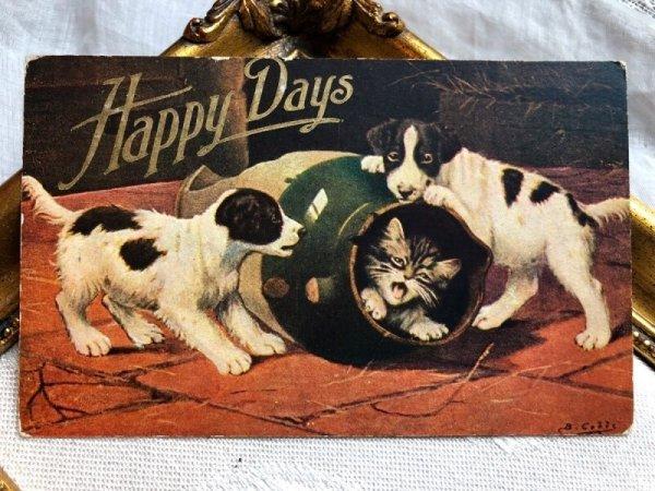 画像1: Postcard  子猫と子犬  (1)