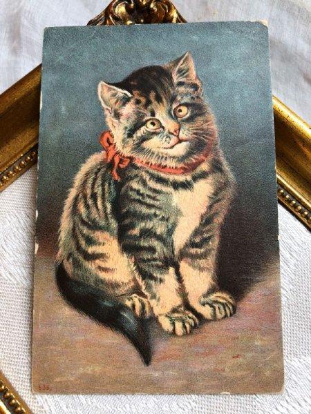 画像1: Postcard  赤いリボンのキジトラ猫  (1)