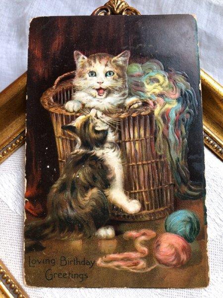 画像1: Postcard  毛糸と猫  (1)