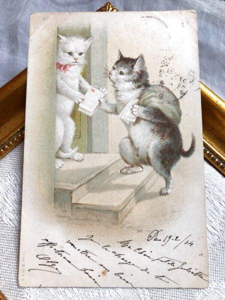 画像1: Postcard  手紙を配達する猫さん 郵便  フランス1904年 (1)