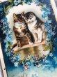 画像2: Postcard   バレンタイン 恋する猫たち キジトラ Helena Maguire (2)