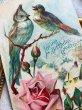 画像2: Postcard  2羽の小鳥 薔薇のお花 1910年 (2)