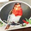 画像1: Postcard クリスマス ホーリーと小鳥 ロビン (1)