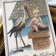 画像1: Postcard コウノトリが運んできた赤ちゃん アメリカ1914年 (1)