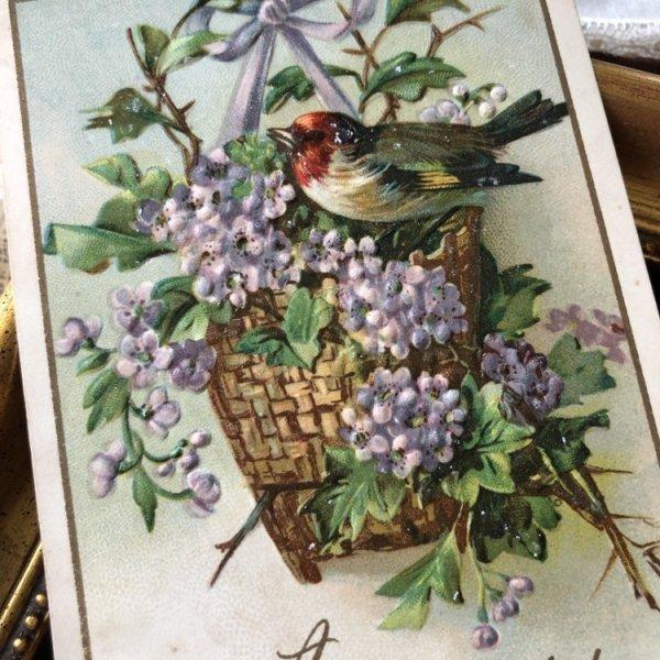 画像1: Postcard ライラックのお花と小鳥  (1)