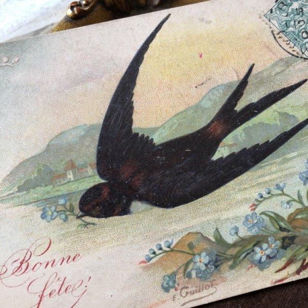 画像1: Postcard 薔薇と忘れな草のお花とツバメ フランス1906年 (1)