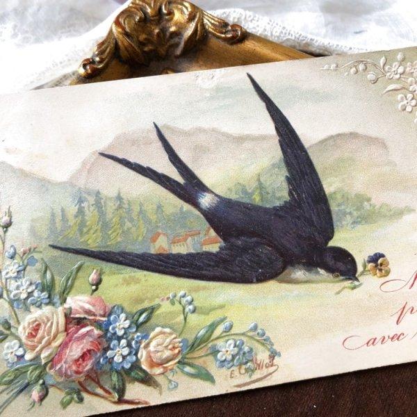 画像1: Postcard 薔薇と忘れな草のお花とツバメ フランス1907年 (1)