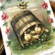 画像1: Postcard 薔薇のお花と小鳥  (1)