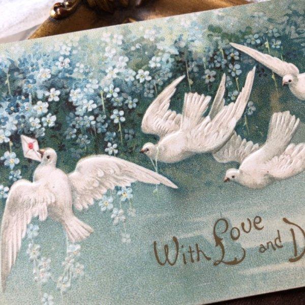 画像1: Postcard バレンタイン 忘れな草のお花と手紙を運ぶ白鳩 1909年 E.Clapsaddle (1)