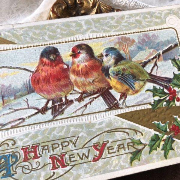 画像1: Postcard 小鳥とホーリー 雪景色 アメリカ1912年 (1)