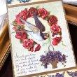 画像1: Postcard 薔薇のお花の馬蹄とツバメ アメリカ1910年 (1)