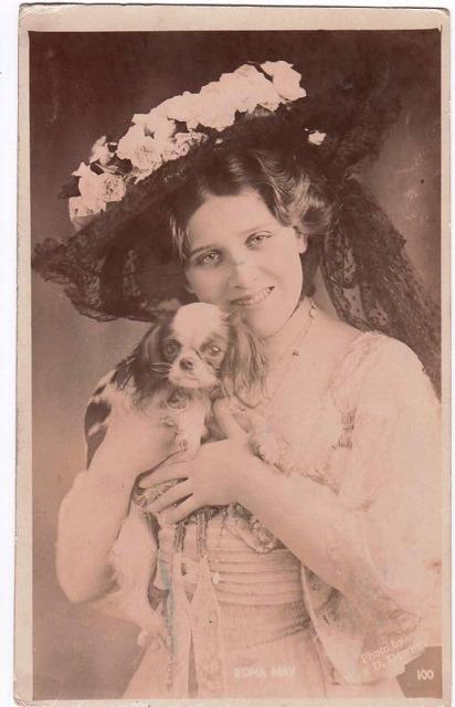 イギリス女優 Edna May スパニエル犬(キャバリア) [w700][Snowdrop Postcards アンティークカード専門店]