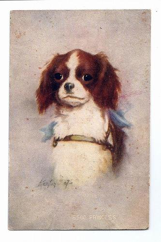 Postcard スパニエル犬 Princess [n4091][Snowdrop Postcards アンティークカード専門店]
